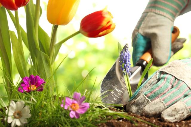 Best garden trowels UK 2021