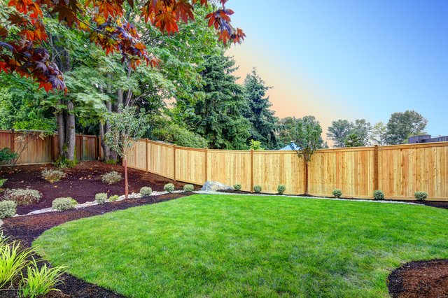 <p>Essential tools to keep your garden tidy</p>