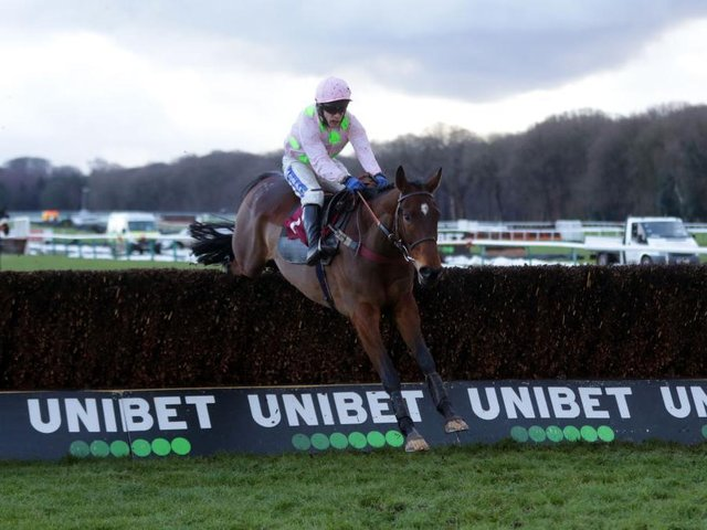 Royale Pagaille ridden by Tom Scudamore on their way to winning the Peter Marsh Handicap Chase at Haydock Park