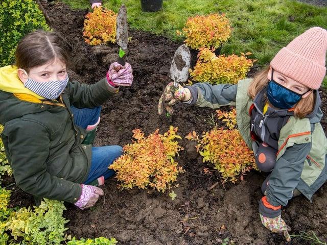 1st Waddington Brownies putting their gardening skills to good use
