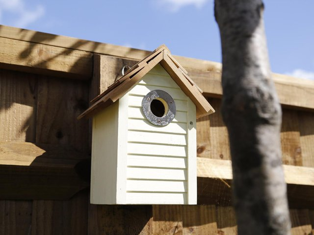 The nest boxes for feathered friends in Whalley